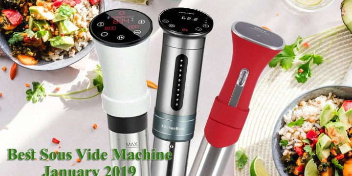 New Arrivals 3 best sous vide cooker in January, 2019