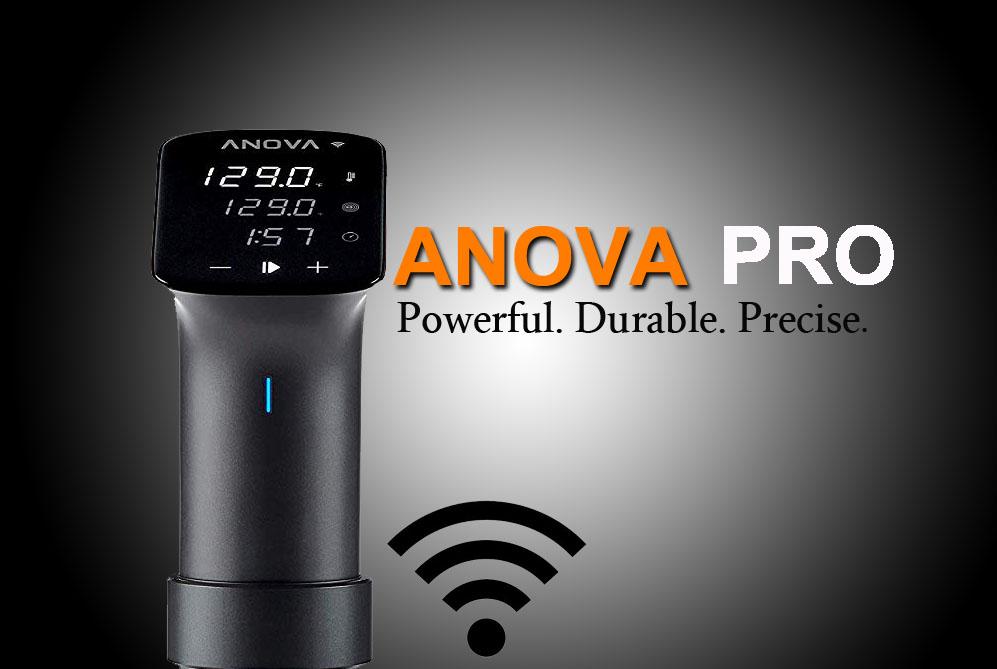 Anova Precision Cooker Pro Review