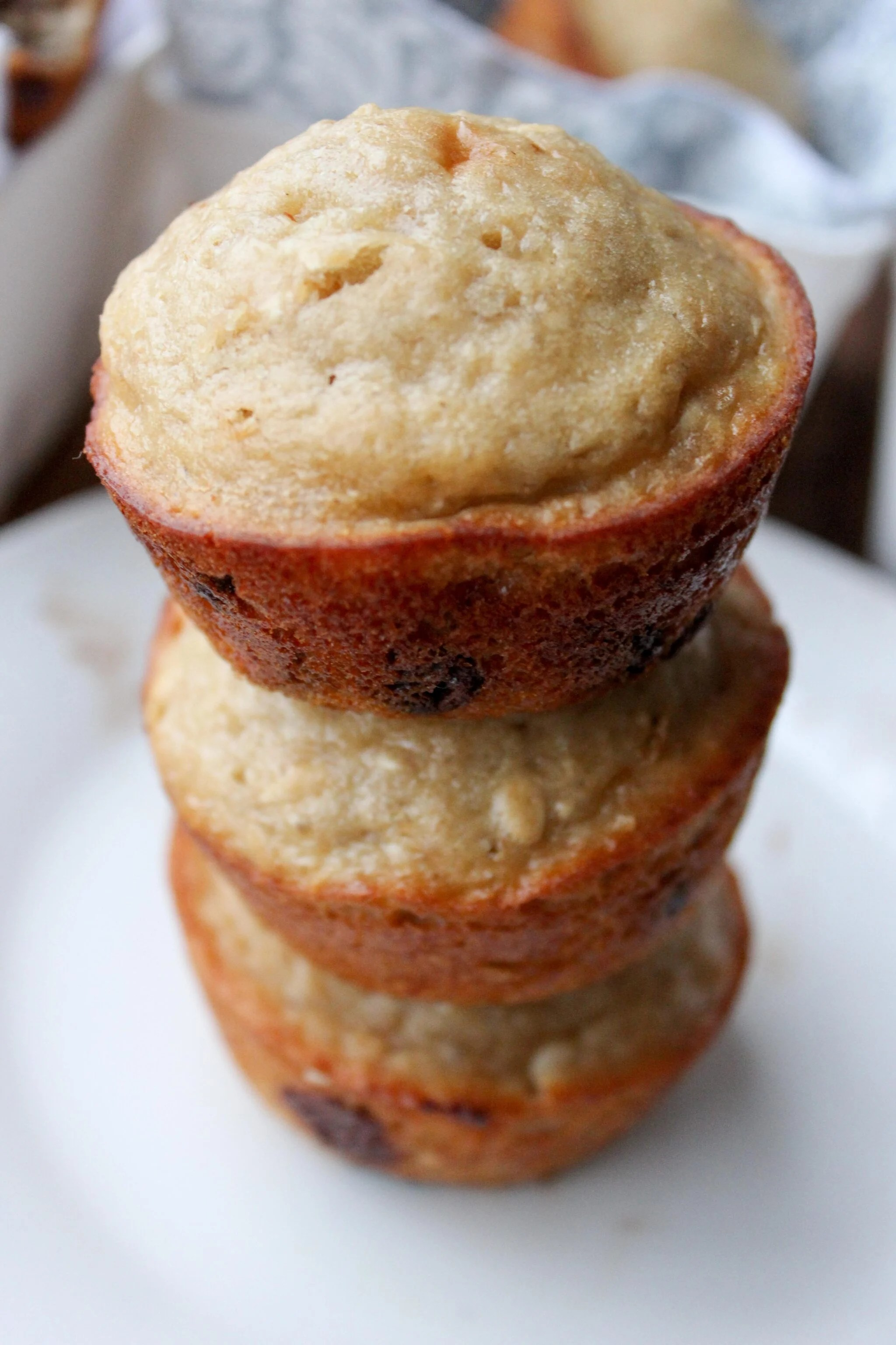Healthy Oatmeal Chocolate Chip Muffins   What Molly Made