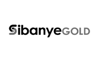 sibanye-gold-best-sap-client