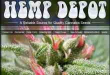 Photo of Hemp Depot Review