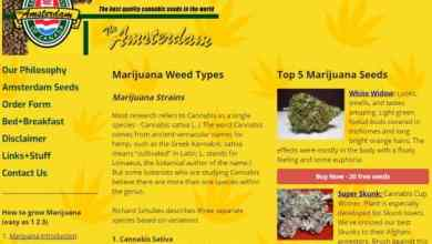 Photo of The Amsterdam Seed Company Canada Review