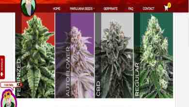 Photo of Crop King Seeds Review