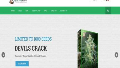 Photo of Beaver Seeds Review