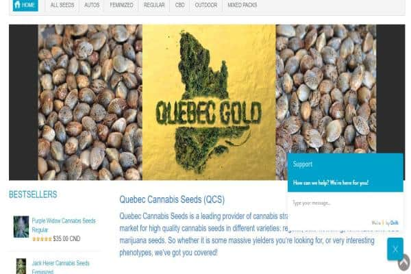 Photo of Quebec Cannabis Seed Bank Review