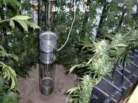 Heath Robinson Vertical Grow Using Rockwool Slabs: Part 2 ...