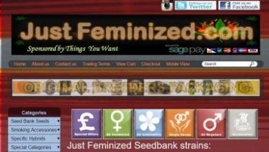 Photo of Just Feminized Seed Bank Review