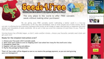 Photo of Cannabis Seeds 4 Free Review