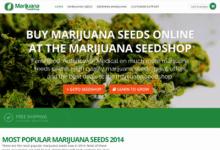 Photo of Marijuana Seed Shop Review
