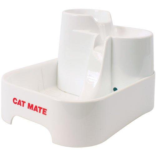 Cat Mate Water Fountain Dispenser Review Must Read