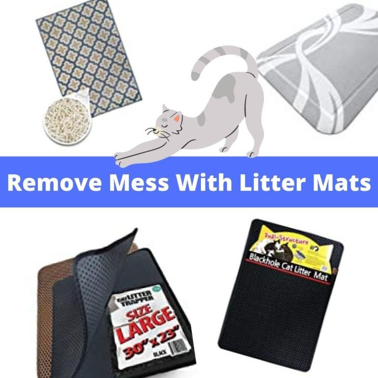 remove mess with litter mat
