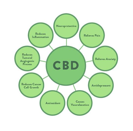 Graphic of benefits of CBD