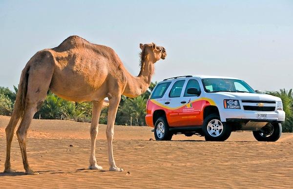 Chevrolet Tahoe Saudi Arabia February 2013
