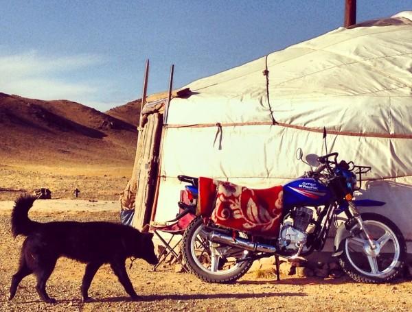 Gobi motorbike