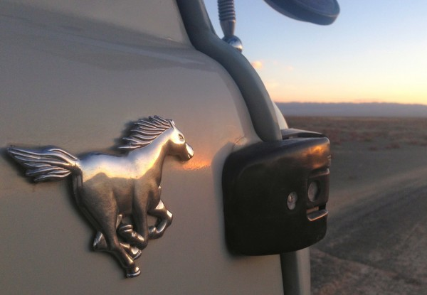 Silver Mustang