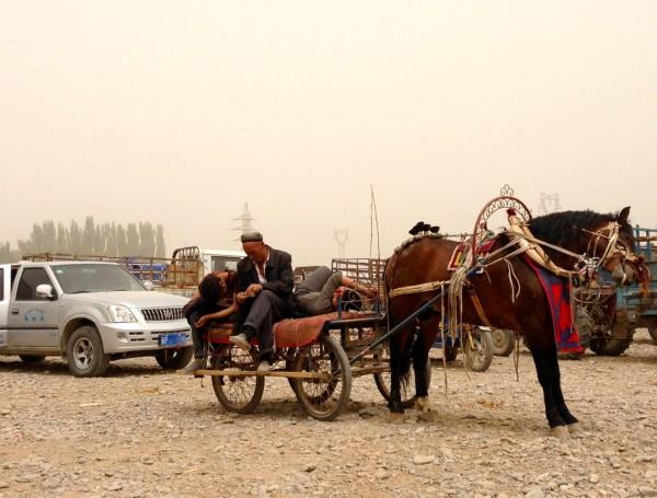 8. Tianqi Meiya Lucheng TN1020A