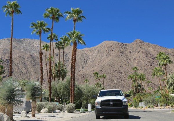 Albert Palm Springs 3