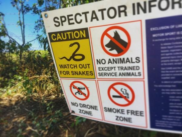 wrc-australia-snake-warning