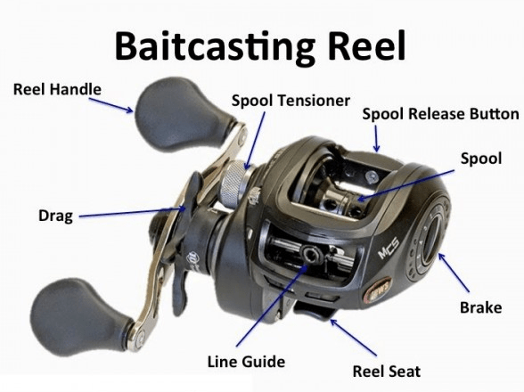 FISHING TIPS | BEST SPINNING REEL