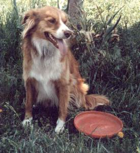 Trooper with frisbee