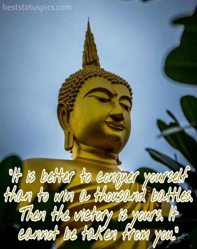 Buddha Quotes On Life With Images   Best Status Pics