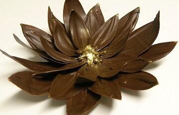Цветок с помощью спрея-заморозки Шокофризер