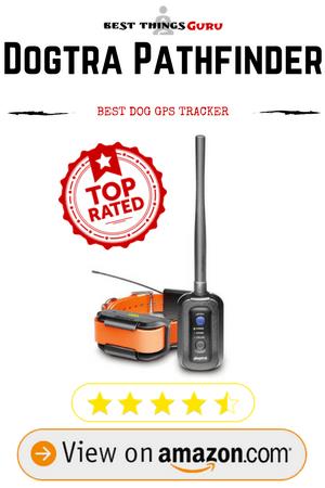 Best Dog Gps Tracker Reviews