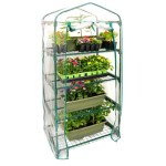 Top 10 Best Mini Greenhouses Selection Reviews