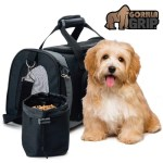 Top 10 Best Pet Carriers Reviews