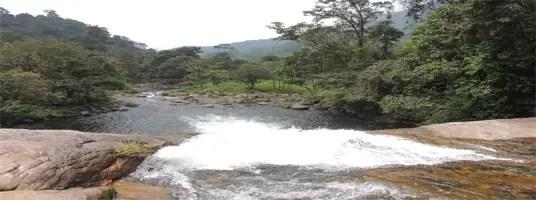 chinnakallar fall tourist places in valparai