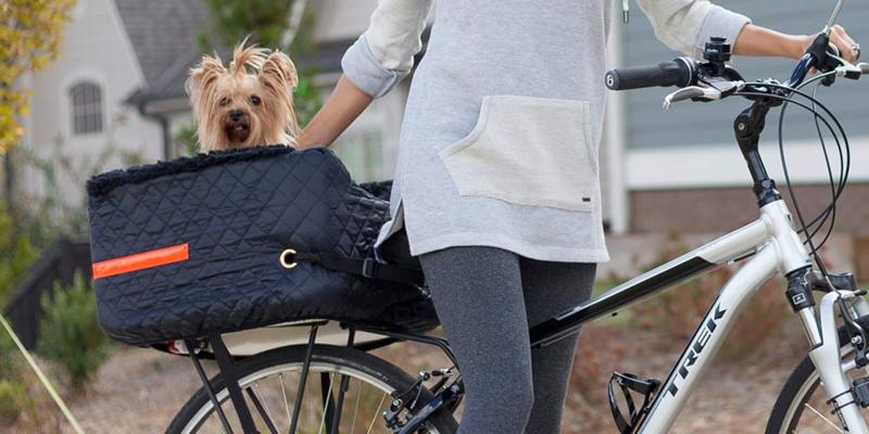 best bags for dogs to travel