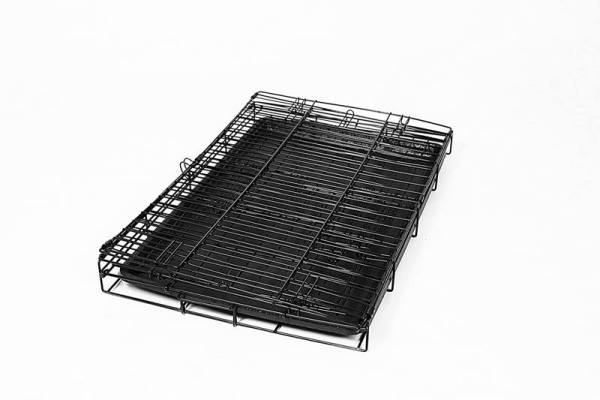 carlson dog crate foldable