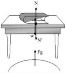 Panduan Lengkap Belajar Hukum Newton 1, 2 dan 3 3