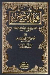 Hashia Shykhzada Ala Tafseer Al Baizawi حاشیہ شیخ زادہ علی تفسیر البیضاوی