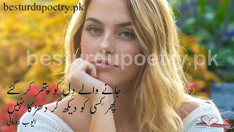 jane waly dil ko pathar kar gaey-besturdupoetry.pk