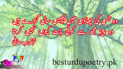 wo jis ki chaaon main - tehzeeb hafi poetry in urdu - besturdupoetry.pk