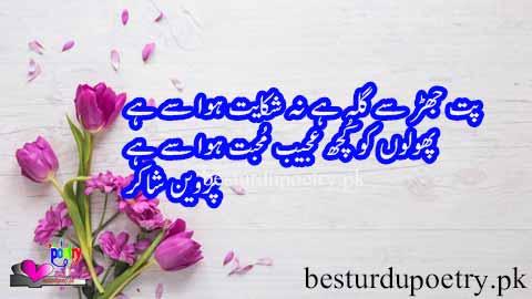 phoolon ko kuch ajeeb muhabbat hawa say hai