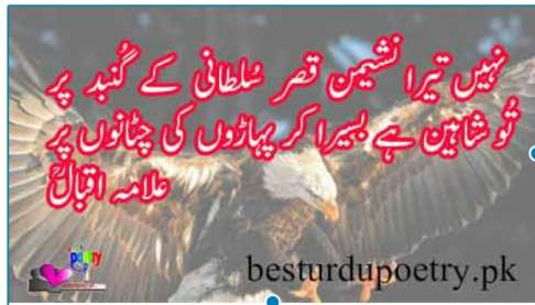 nahi tera nasheman qasar e sultani kay gunbd par
