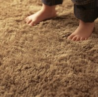 How To Choose The Best Vacuum For Carpets - Updated ...