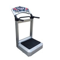 North America Hot Sale 1000 Watt Vibration Plate Machine Review