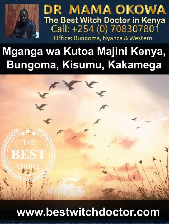 Mganga wa Kutoa Majini Kenya, Bungoma, Kisumu, Kakamega, Kisii na Busia