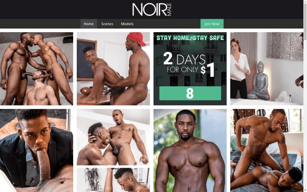 Noirmale - Best Premium Gay XXX Sites