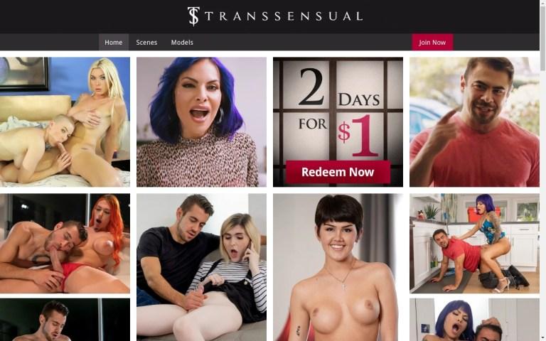 Transsensual - Best Premium Shemale XXX Sites