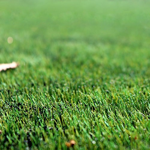 How to Install Artificial Grass on Natural Surfaces