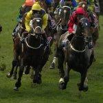 Horse Racing Cheltenham Free Bet Offers