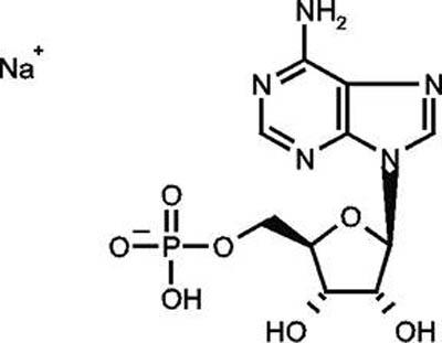 Adenosine 5'-monophosphate sodium salt, 99%, ACROS