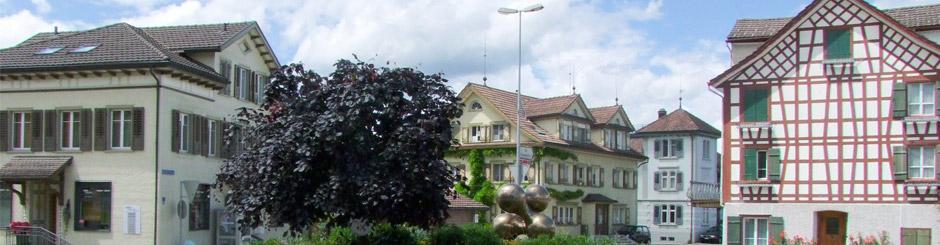 DKS Bild Gemeinde Jonschwil 20150101