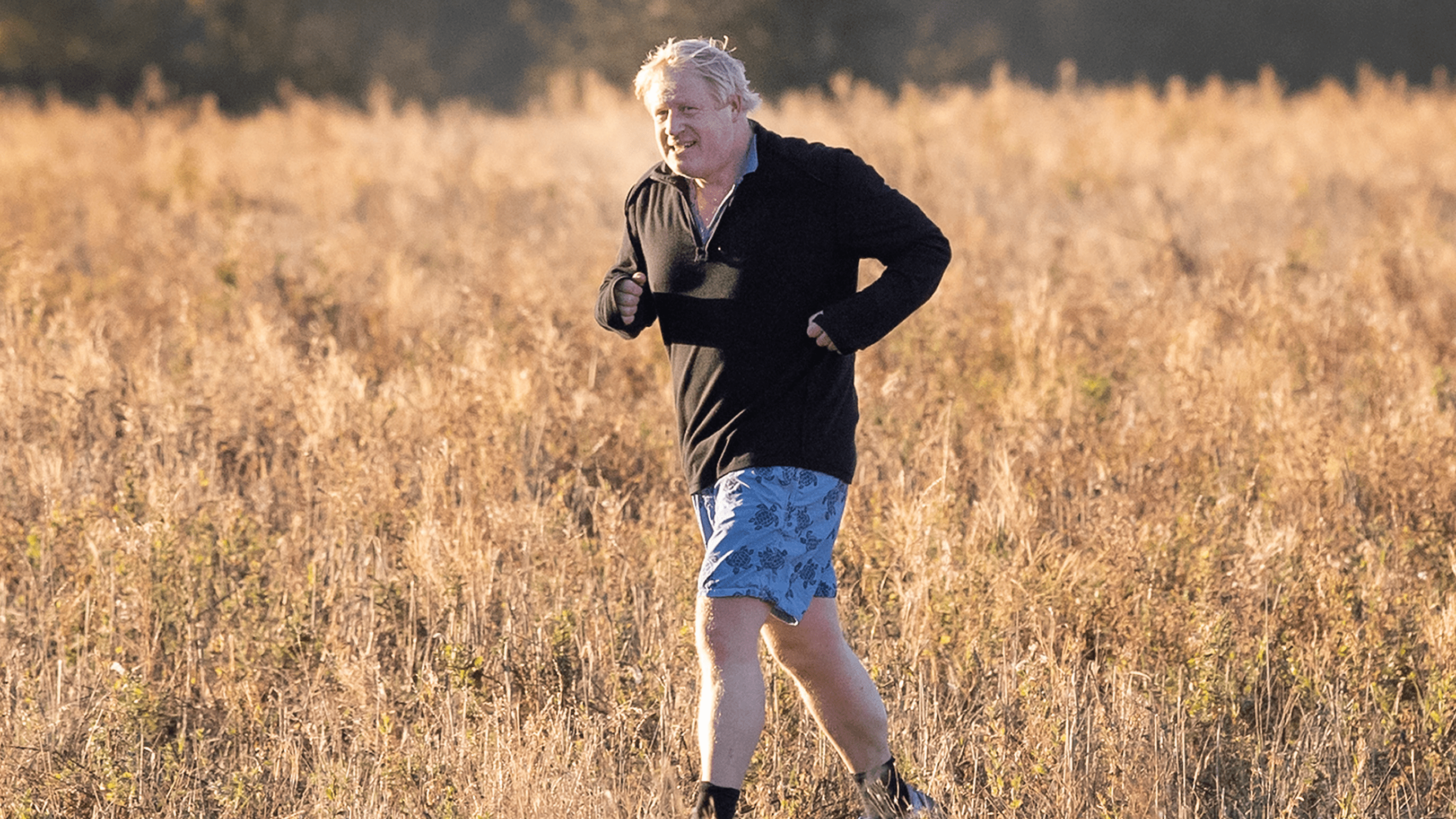 Image result for boris johnson walks through a field