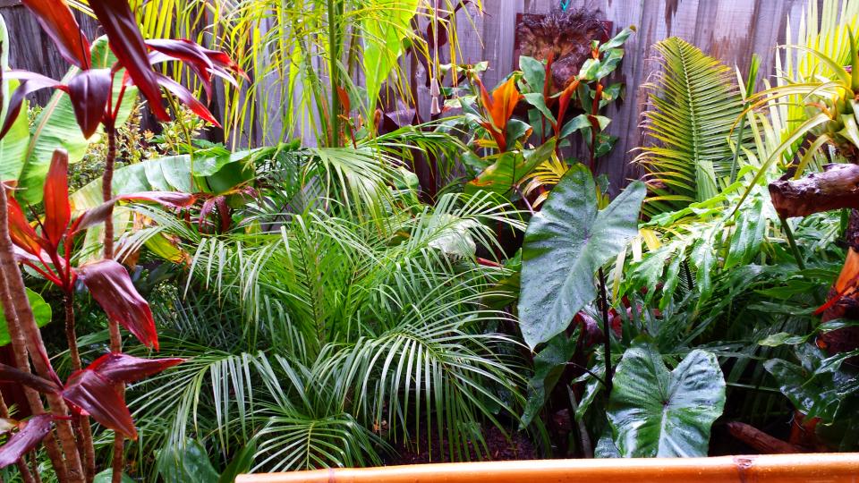 Design My Own Garden