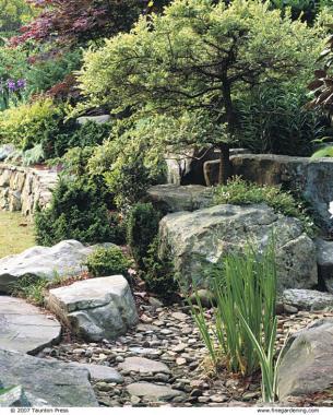 dry stream double duty - finegardening